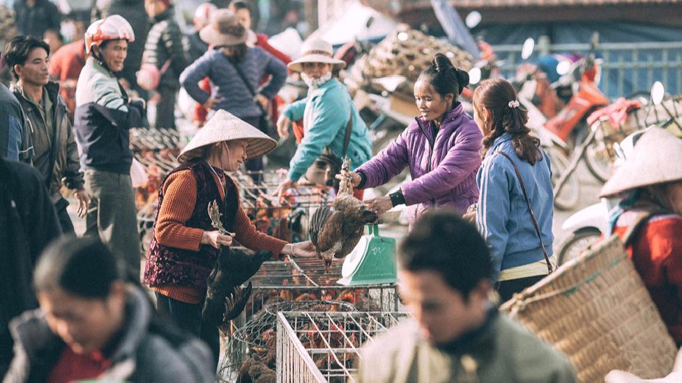 Khám phá nét văn hóa độc đáo của chợ phiên Bắc Hà
