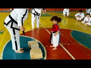 Cao thủ Taekwondo nhí 'lấy thịt đè người' đập vỡ tấm gỗ hài nhất tuần qua