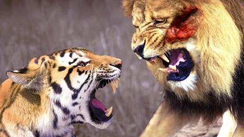 10 loài vật có lực cắn vô địch trong tự nhiên!