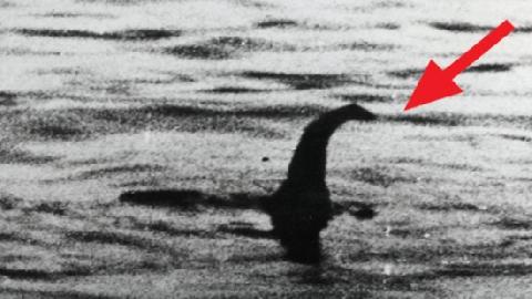 Bằng chứng mới về quái vật hồ Loch Ness huyền thoại