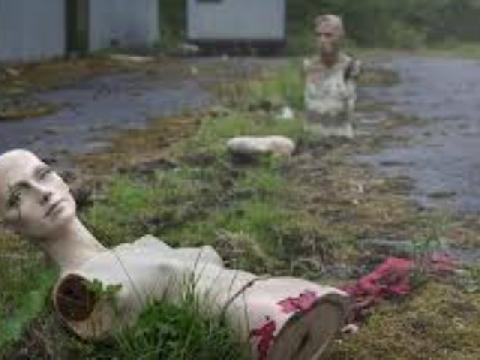 ''Ốc mượn hồn'' làm tổ trong đầu búp bê hỏng trên bãi biển ô nhiễm