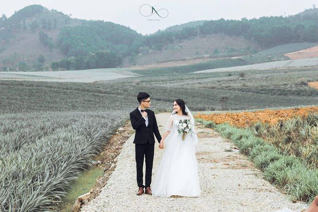 """Check-in cánh đồng dứa đẹp hút mắt, khiến dân phượt phát """"sốt"""" ở Ninh Bình - 12"""