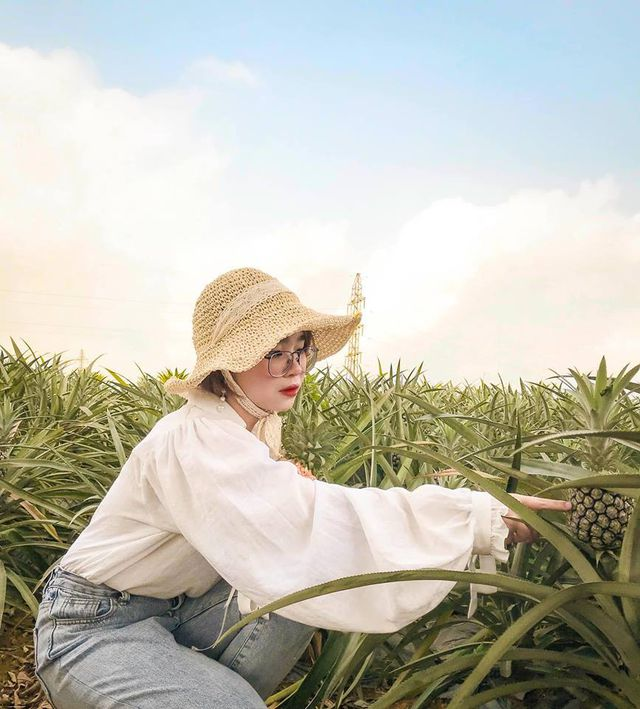 """Check-in cánh đồng dứa đẹp hút mắt, khiến dân phượt phát """"sốt"""" ở Ninh Bình - 7"""