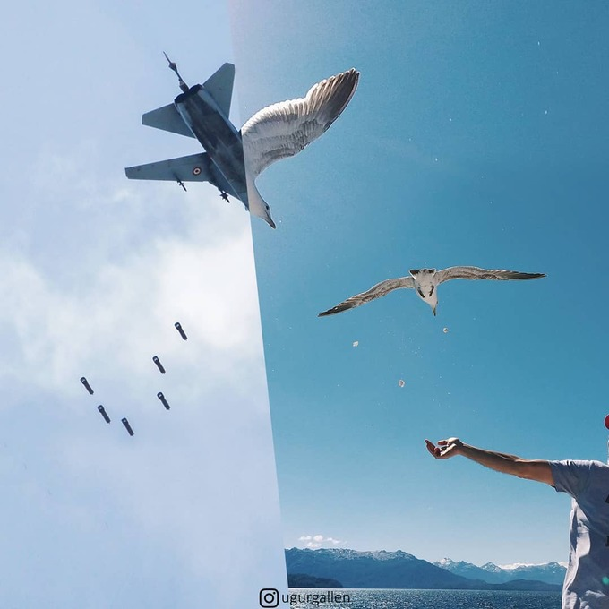<p>  Ai cũng khao khát ngước nhìn lên bầu trời để thấy tự do, thấy đàn hải âu đang sải cánh, thay vì những chiếc máy bay đang chuẩn bị thả bom.</p>
