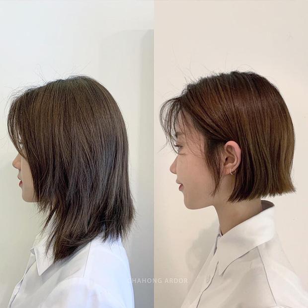 15 màn xuống tóc xuất sắc chứng minh: muốn xinh hơn, trẻ hơn hay sành điệu hơn, bạn chỉ cần mạnh dạn cắt tóc ngắn - Ảnh 2.